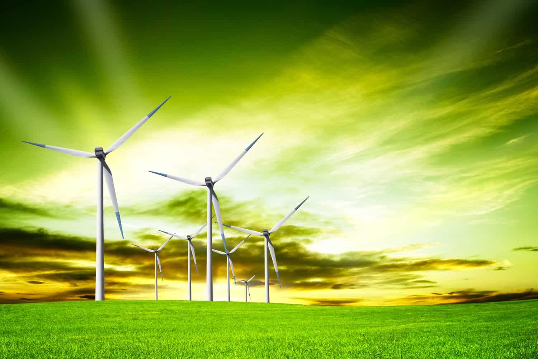 Der passende Weg zum umweltbewussten Tarif und zur Preisgarantie