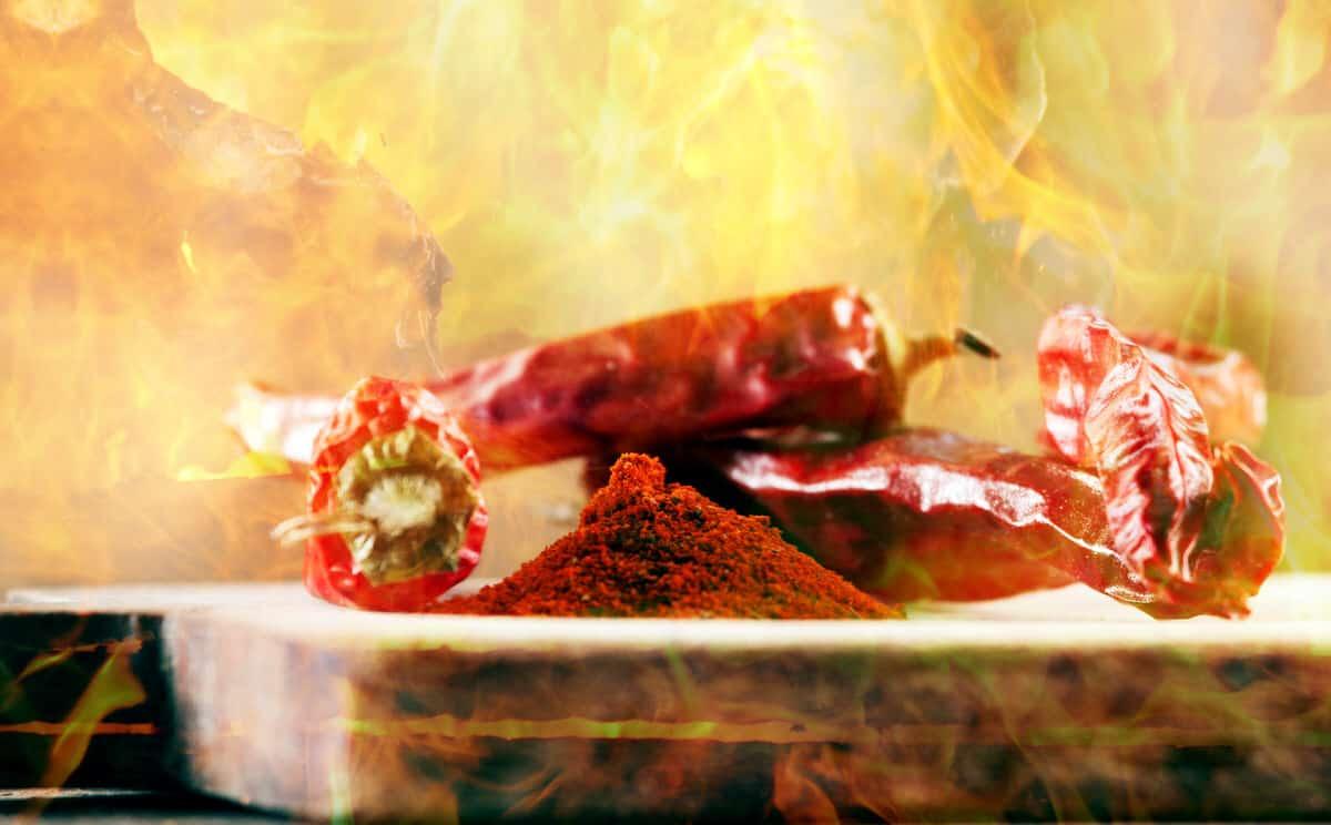 Warum brennt Senf kurz, und Chili viel länger auf der Zunge?