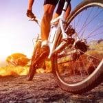 Fahrradzubehör beim Fachhändler oder online kaufen?