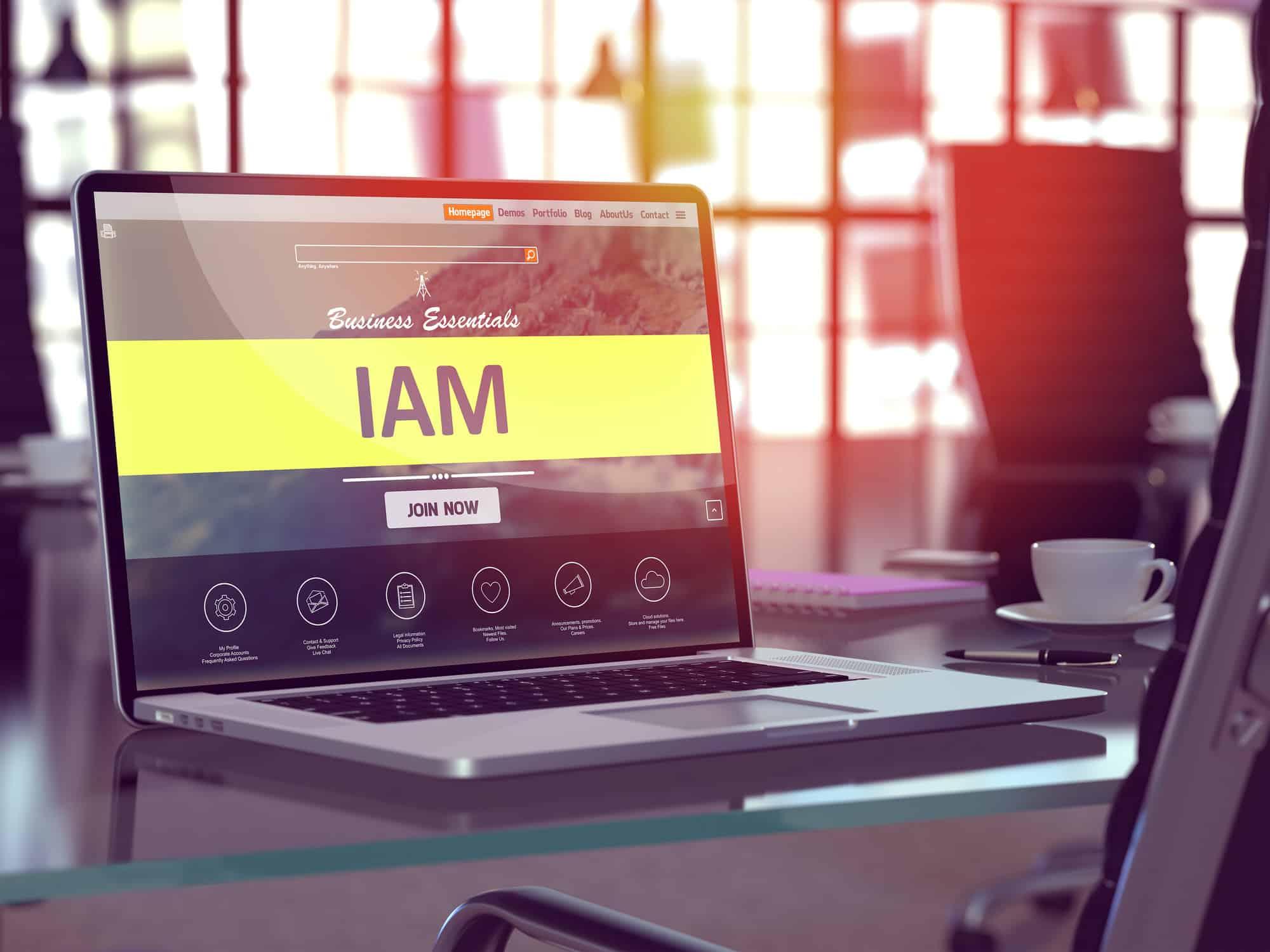 IAM-Systeme